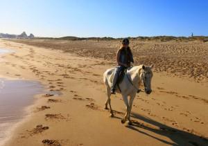 Horseriding near Armacao
